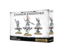 TZEENTCH ARCANITES - TZAANGOR ENLIGHTENED (BOX)